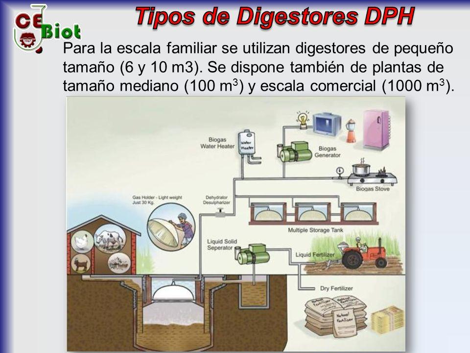 Tipos de Digestores DPH