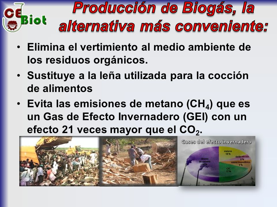 Producción de Biogás, la alternativa más conveniente: