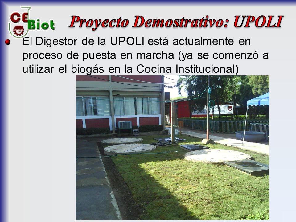Proyecto Demostrativo: UPOLI