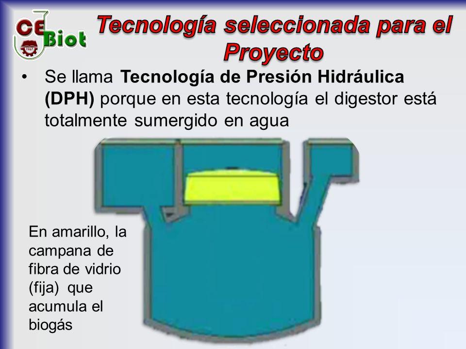 Tecnología seleccionada para el Proyecto