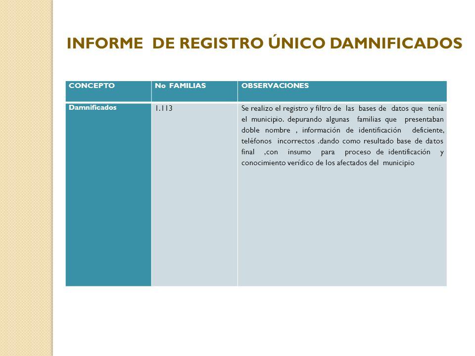 INFORME DE REGISTRO ÚNICO DAMNIFICADOS