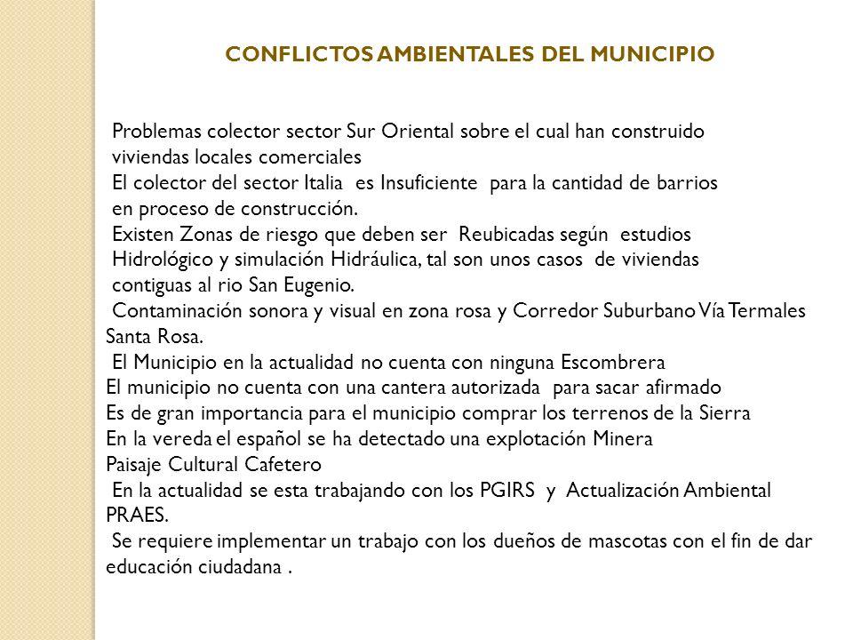 CONFLICTOS AMBIENTALES DEL MUNICIPIO