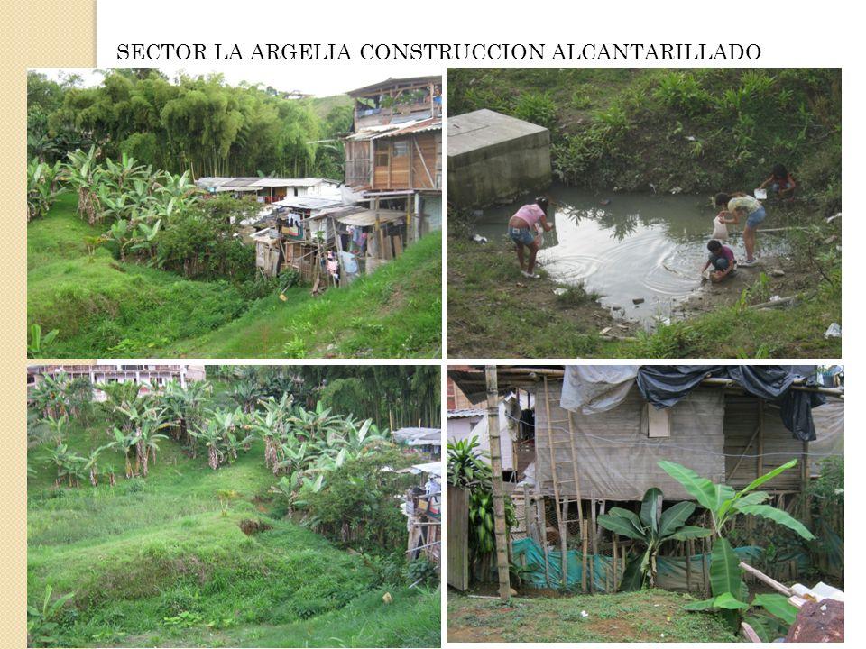 SECTOR LA ARGELIA CONSTRUCCION ALCANTARILLADO