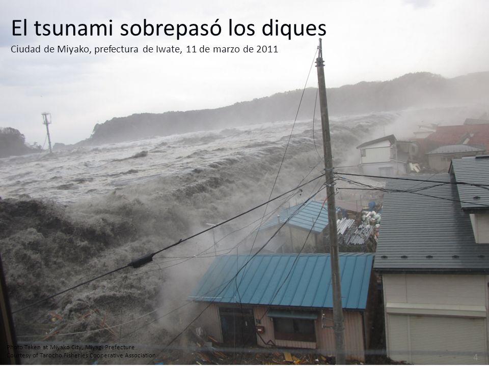El tsunami sobrepasó los diques