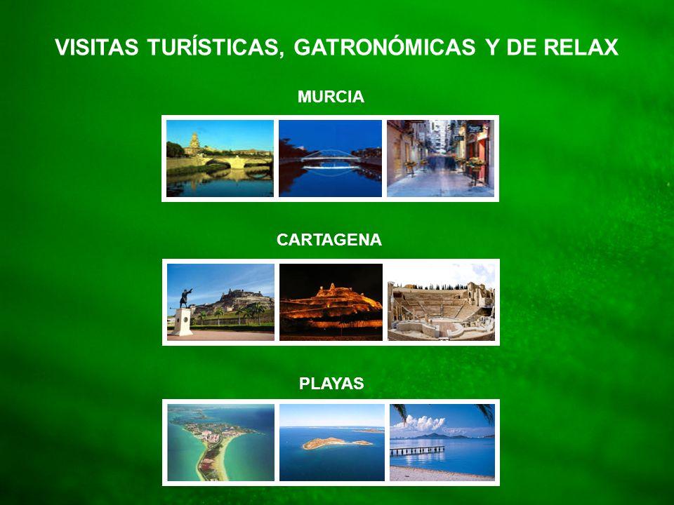 VISITAS TURÍSTICAS, GATRONÓMICAS Y DE RELAX