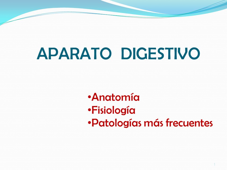 APARATO DIGESTIVO Anatomía Fisiología Patologías más frecuentes ppt ...