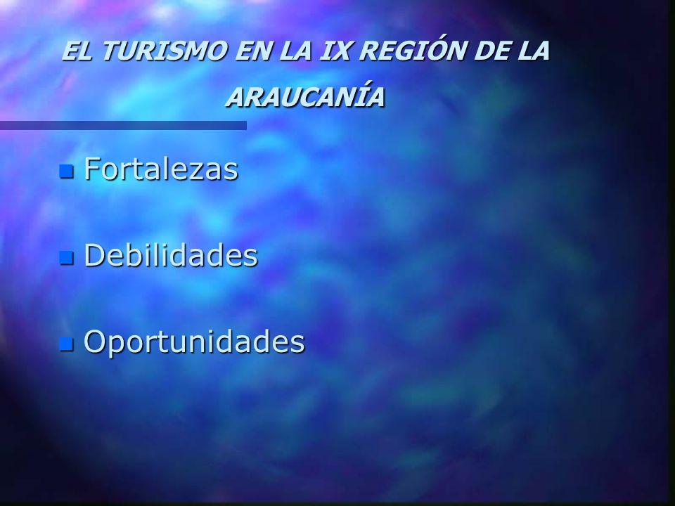 EL TURISMO EN LA IX REGIÓN DE LA ARAUCANÍA
