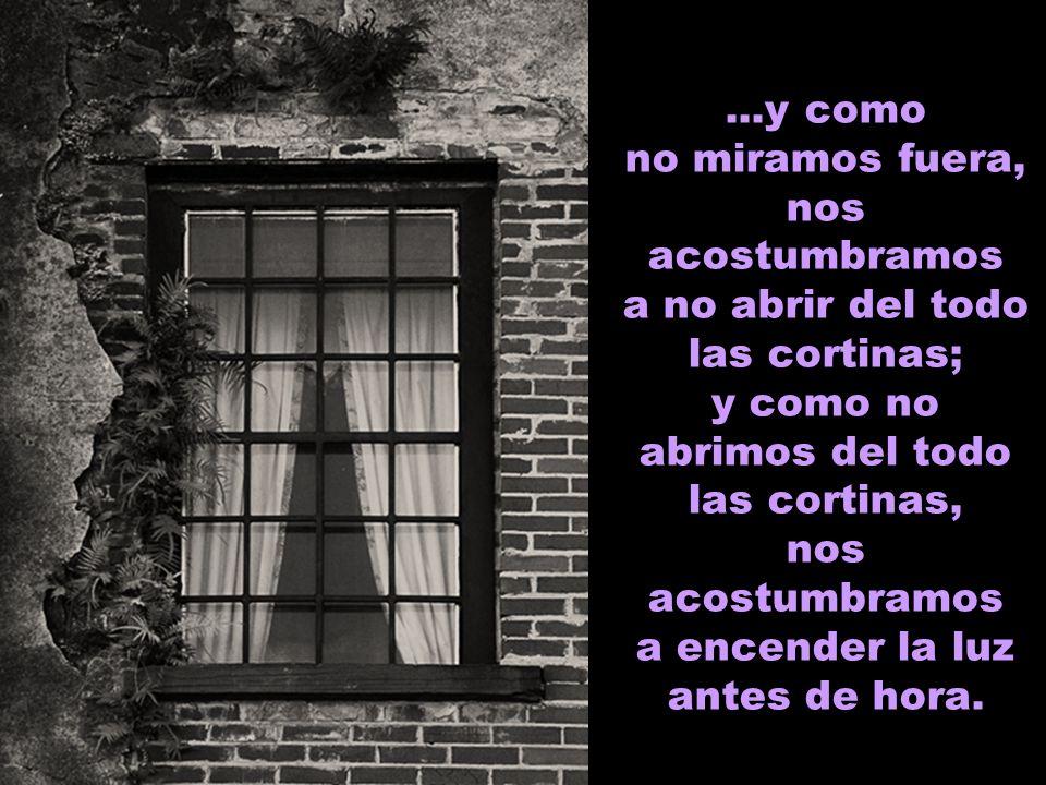 ...y como no miramos fuera, nos acostumbramos a no abrir del todo las cortinas; y como no abrimos del todo las cortinas, nos acostumbramos a encender la luz antes de hora.