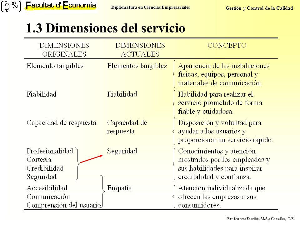 1.3 Dimensiones del servicio