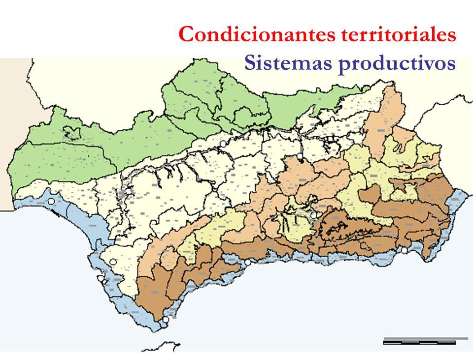 Condicionantes territoriales