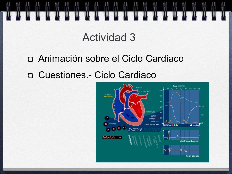 Actividad 3 Animación sobre el Ciclo Cardiaco