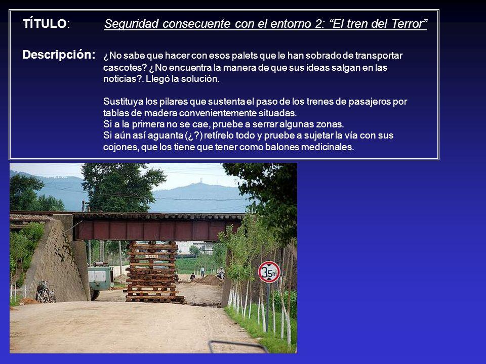 TÍTULO: Seguridad consecuente con el entorno 2: El tren del Terror