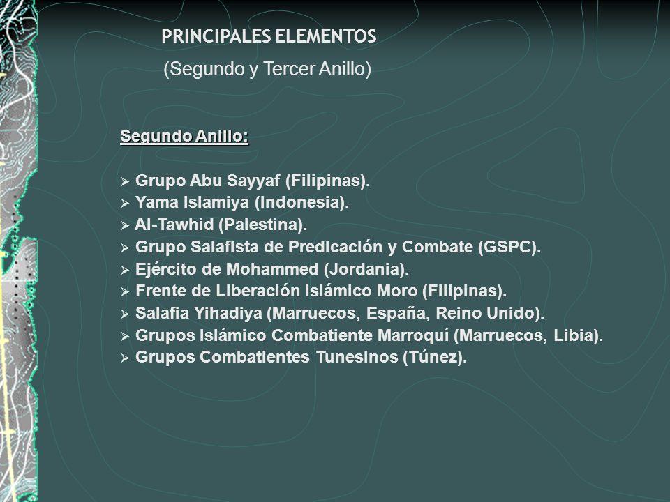PRINCIPALES ELEMENTOS