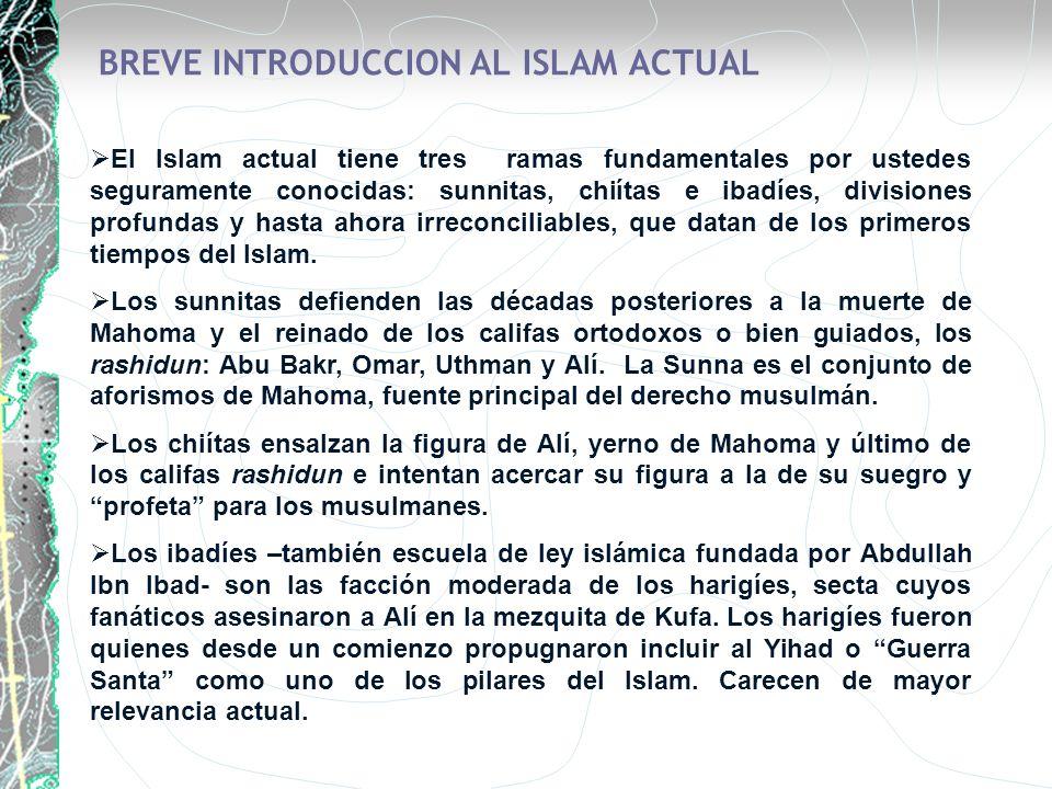 BREVE INTRODUCCION AL ISLAM ACTUAL