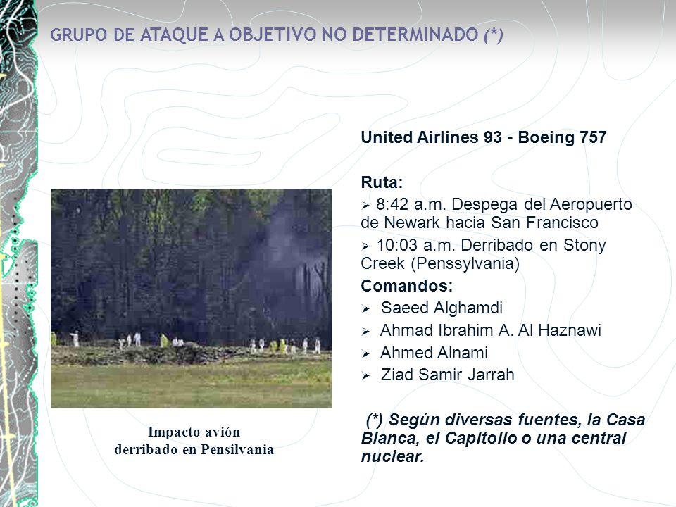 GRUPO DE ATAQUE A OBJETIVO NO DETERMINADO (*)