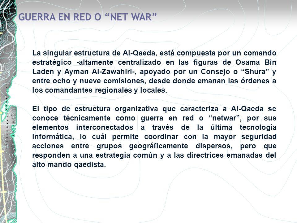 GUERRA EN RED O NET WAR