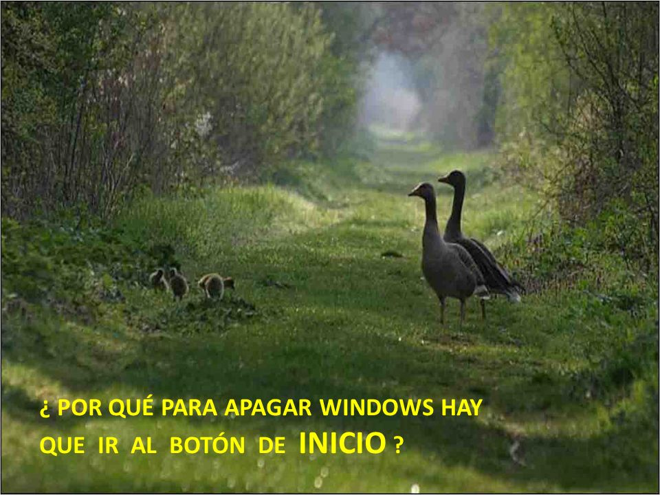 ¿ POR QUÉ PARA APAGAR WINDOWS HAY