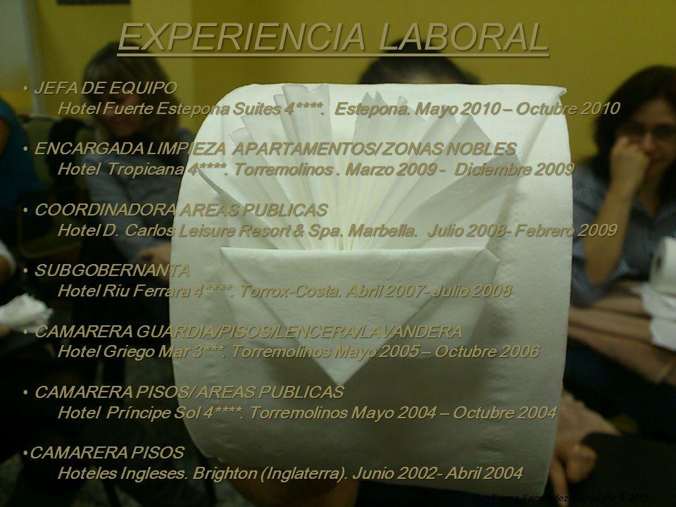 EXPERIENCIA LABORAL JEFA DE EQUIPO