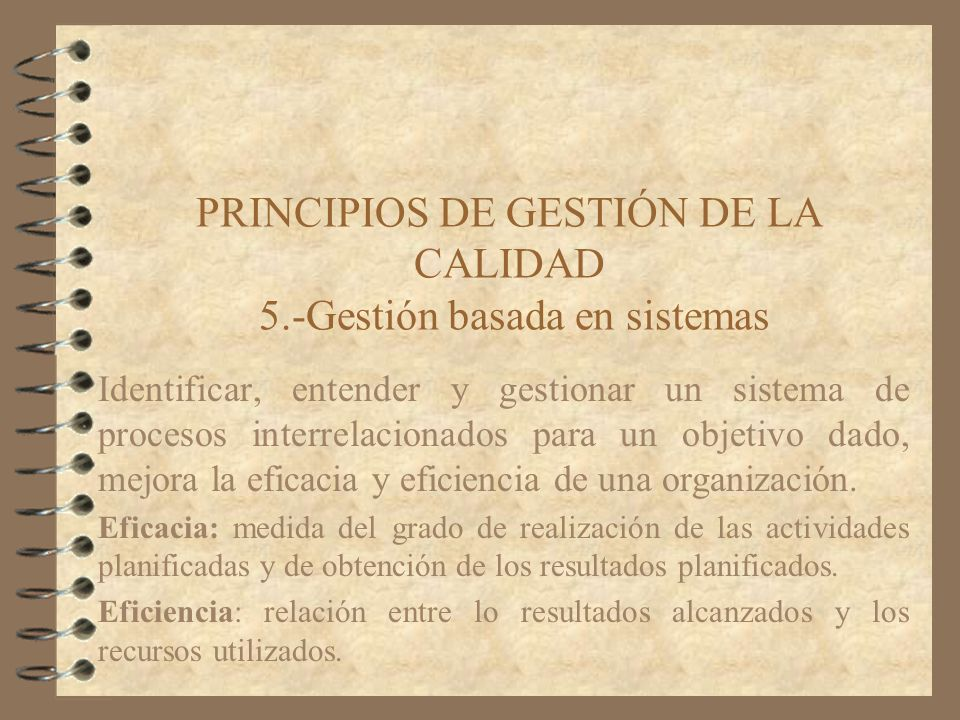 PRINCIPIOS DE GESTIÓN DE LA CALIDAD 5.-Gestión basada en sistemas