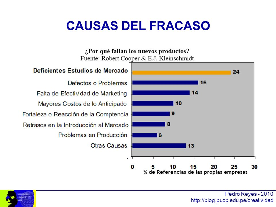 CAUSAS DEL FRACASO Pedro Reyes - 2010