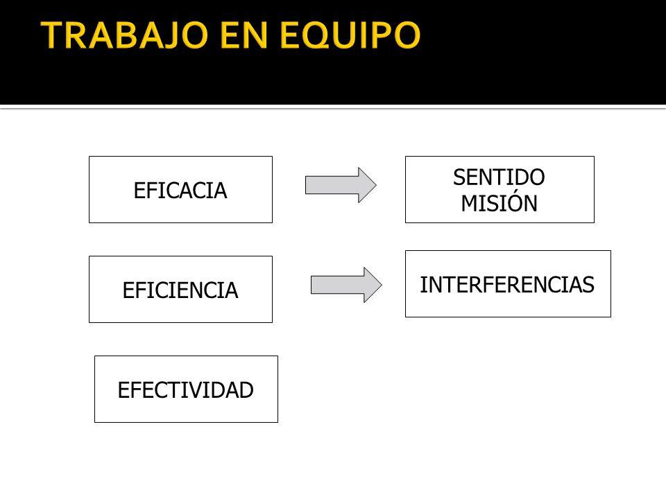 TRABAJO EN EQUIPO SENTIDO EFICACIA MISIÓN INTERFERENCIAS EFICIENCIA