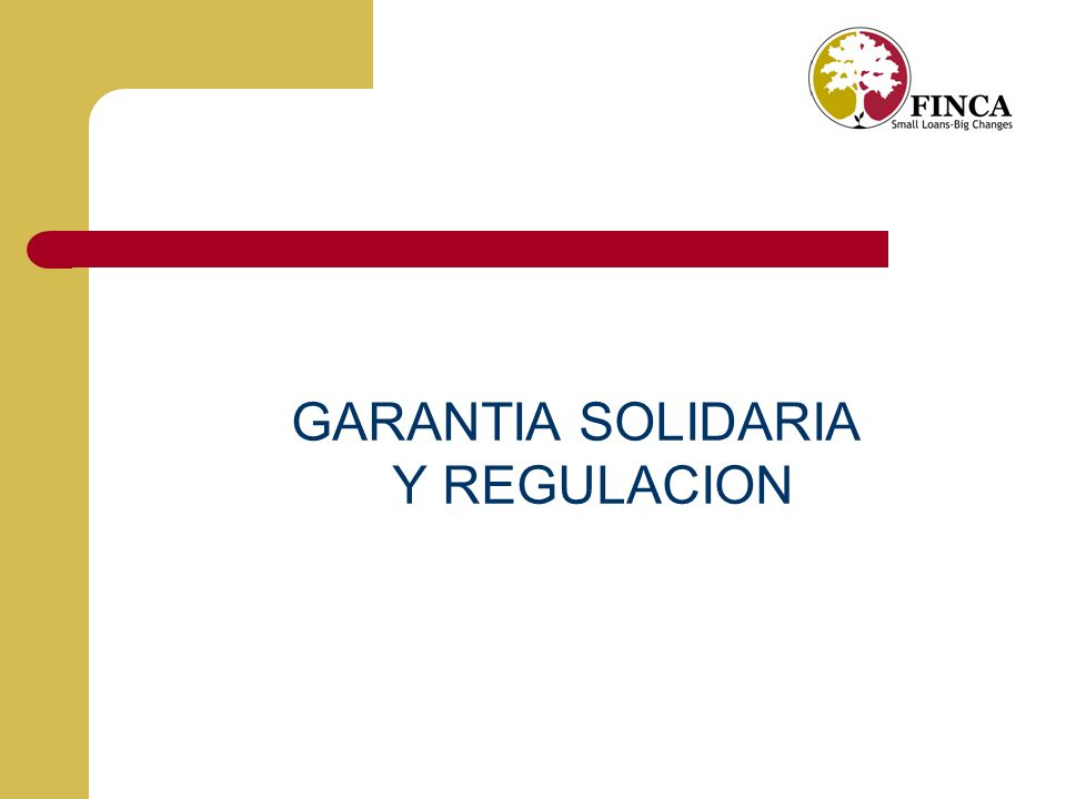 GARANTIA SOLIDARIA Y REGULACION