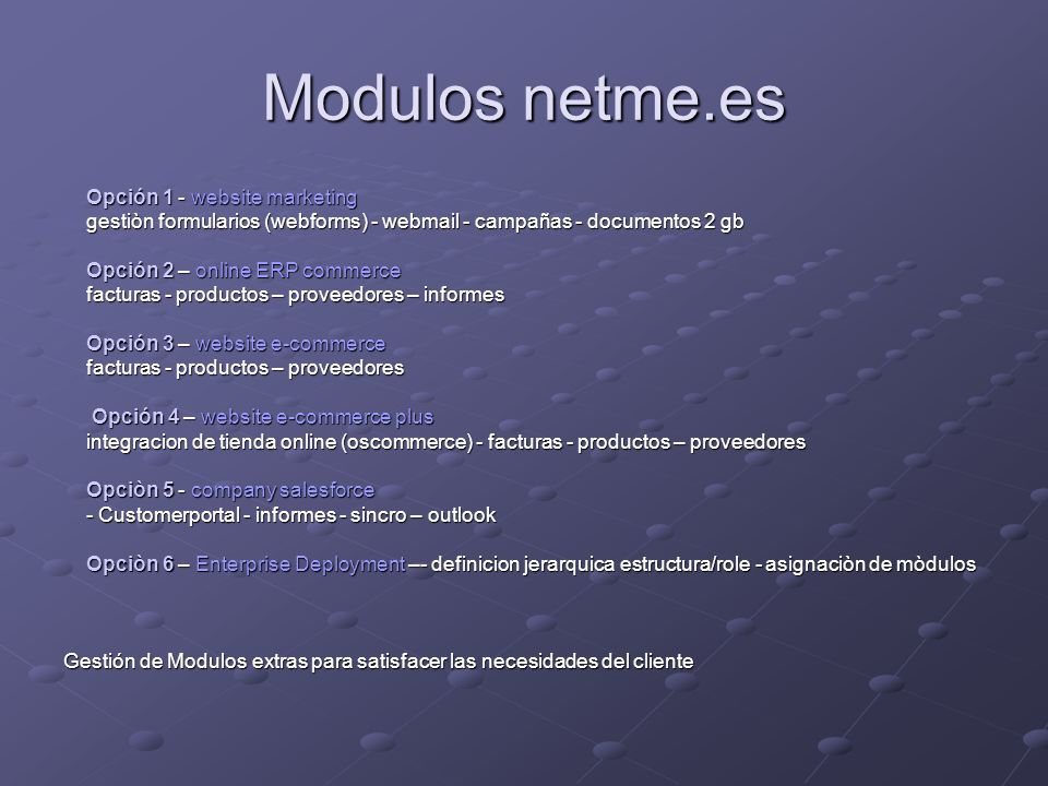 Modulos netme.es Opción 1 - website marketing