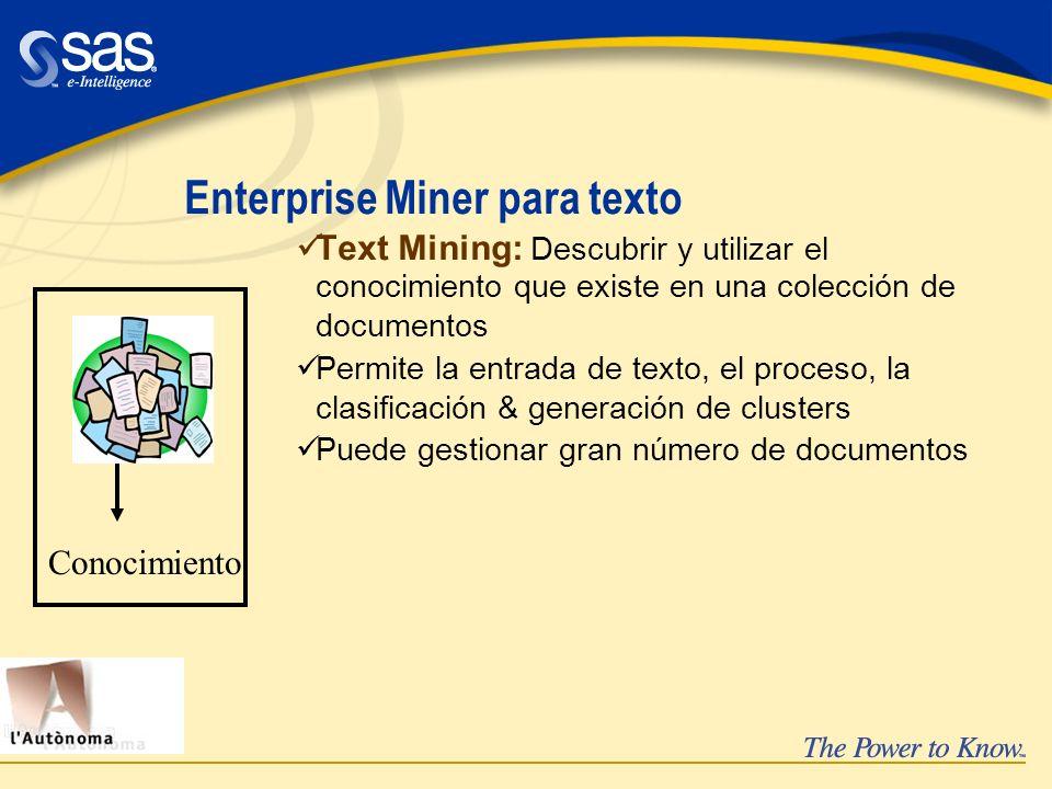 Enterprise Miner para texto