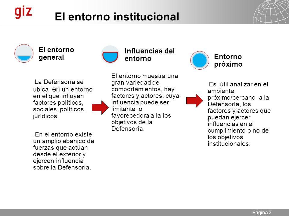 El entorno institucional