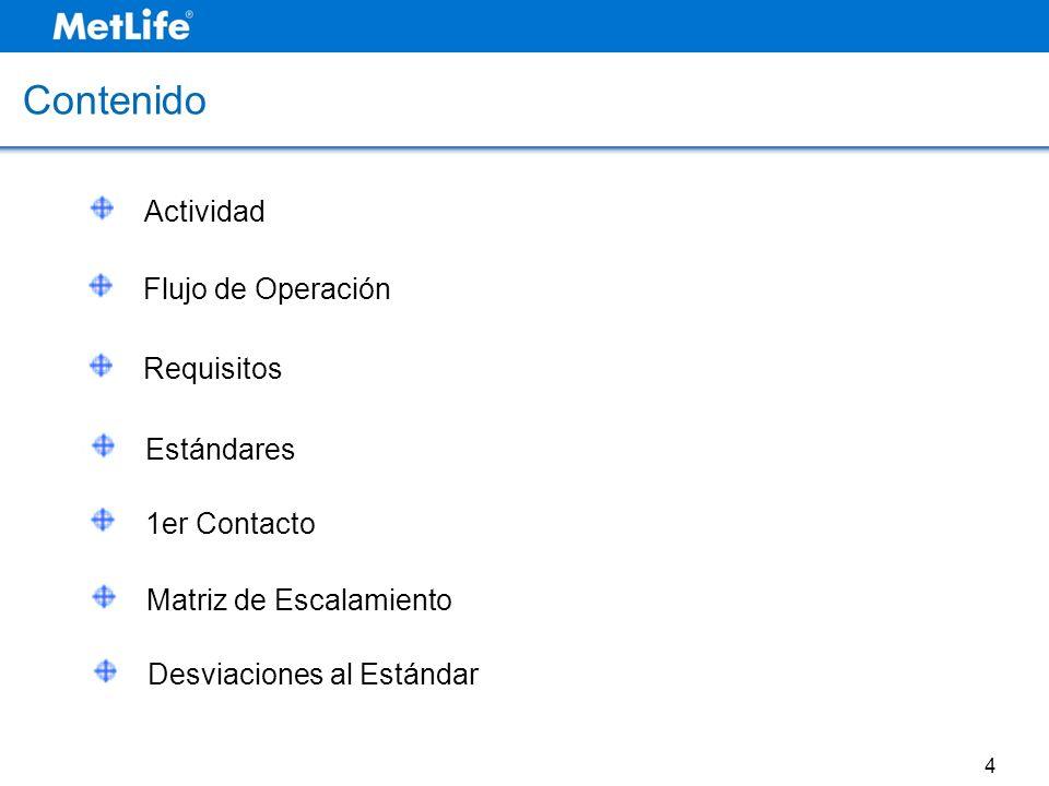 Contenido Actividad Flujo de Operación Requisitos Estándares