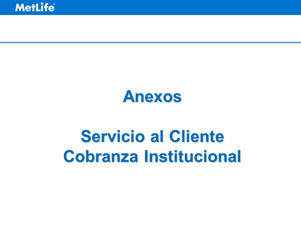 Servicio al Cliente Cobranza Institucional