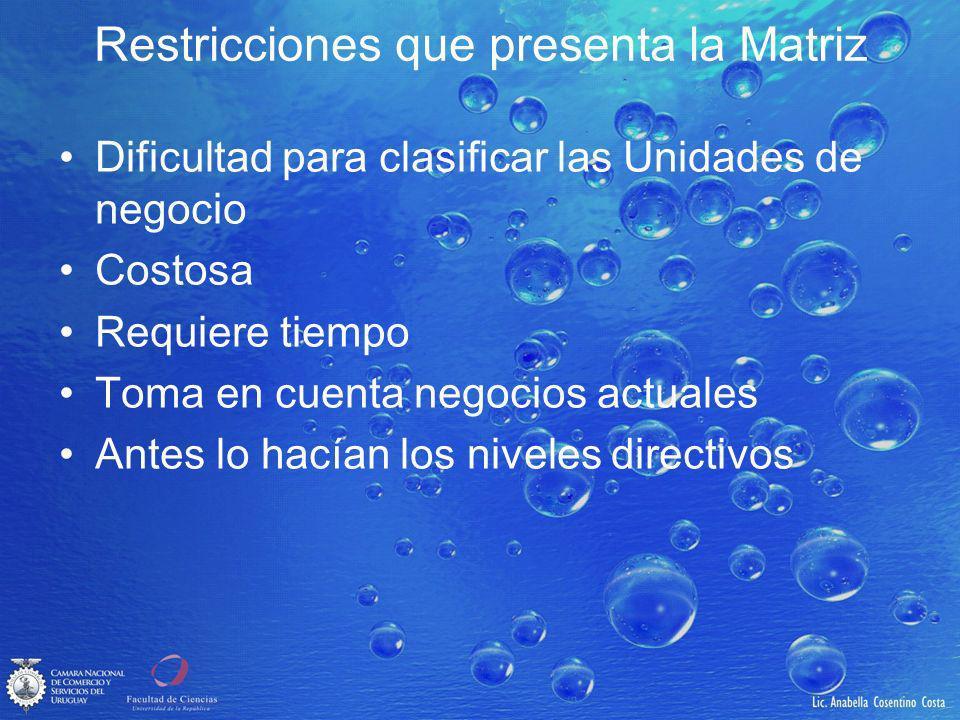 Restricciones que presenta la Matriz