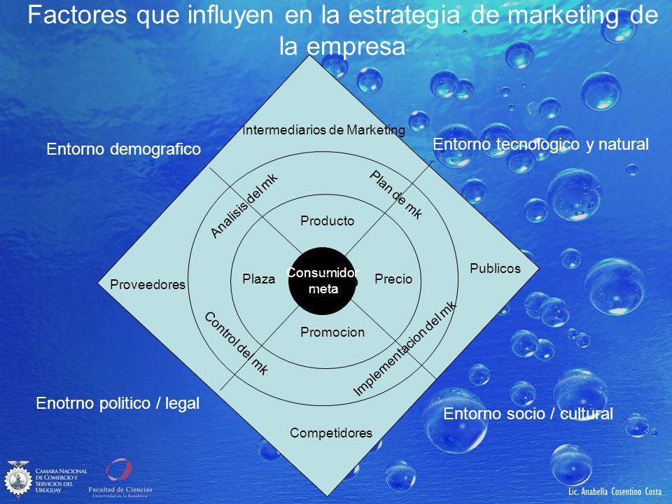 Factores que influyen en la estrategia de marketing de la empresa