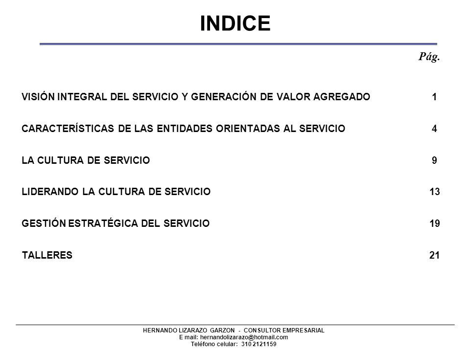 INDICE Pág. VISIÓN INTEGRAL DEL SERVICIO Y GENERACIÓN DE VALOR AGREGADO 1.