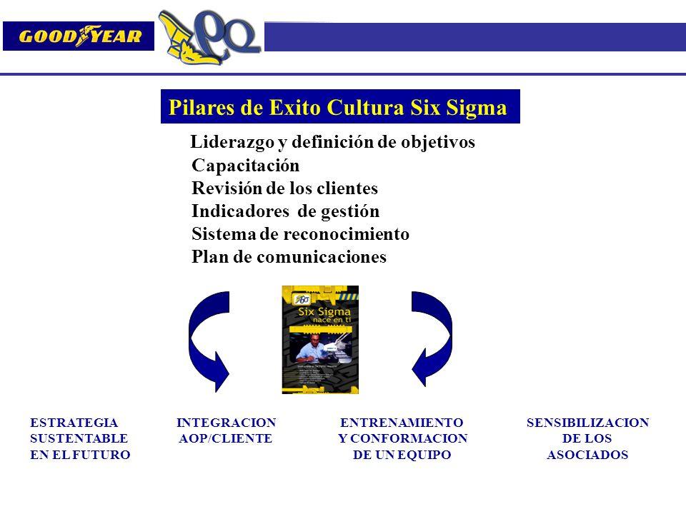 Pilares de Exito Cultura Six Sigma