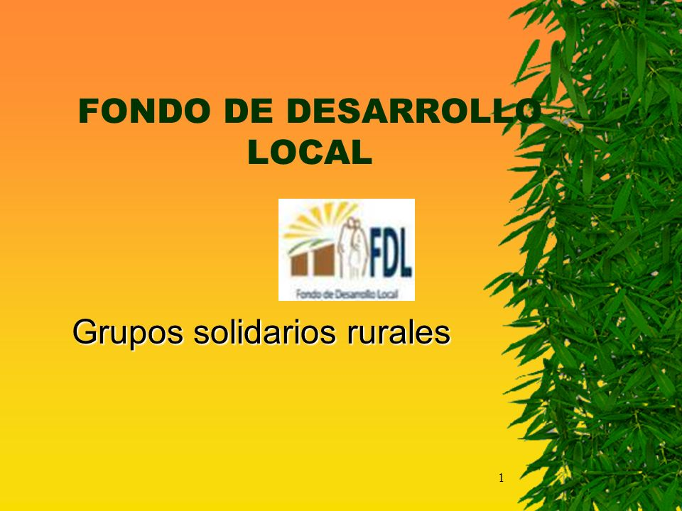 FONDO DE DESARROLLO LOCAL