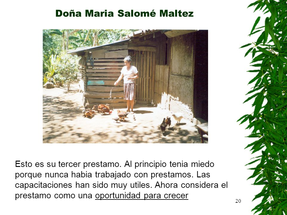Doña Maria Salomé Maltez