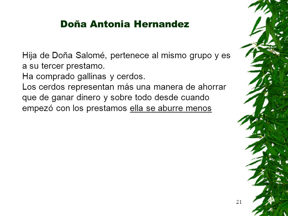 Doña Antonia Hernandez