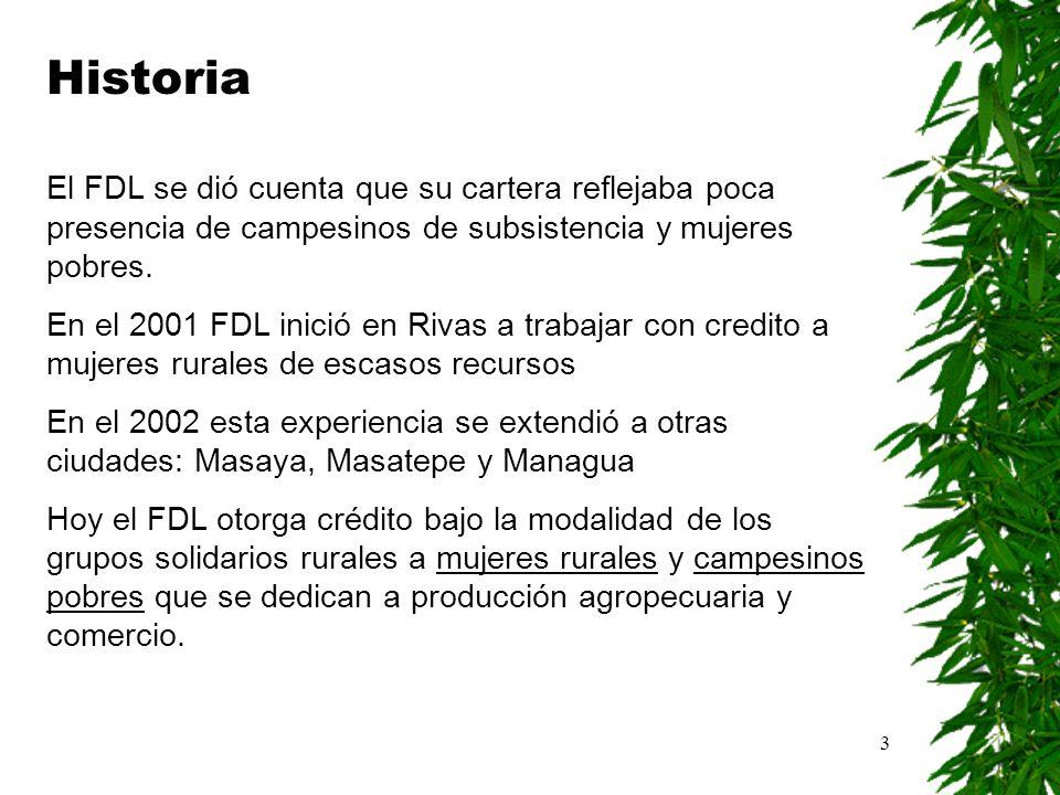 Historia El FDL se dió cuenta que su cartera reflejaba poca presencia de campesinos de subsistencia y mujeres pobres.