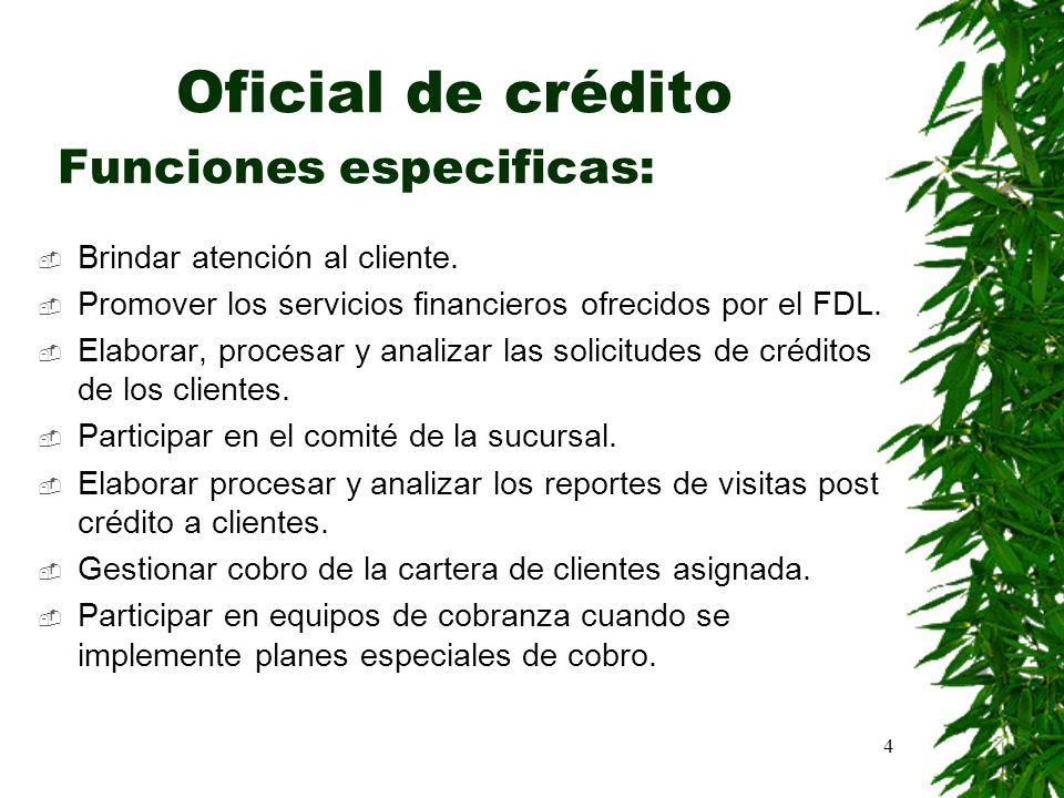 Oficial de crédito Funciones especificas: