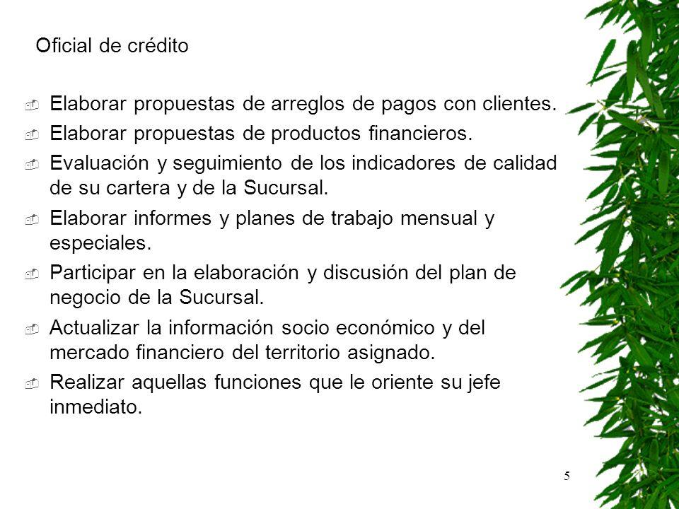 Oficial de crédito Elaborar propuestas de arreglos de pagos con clientes. Elaborar propuestas de productos financieros.