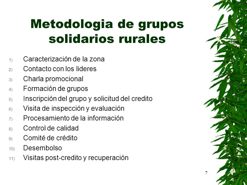 Metodologia de grupos solidarios rurales