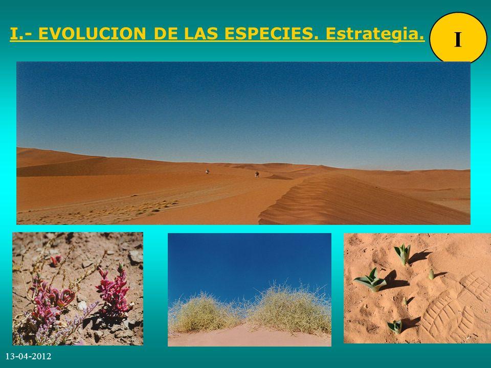 I.- EVOLUCION DE LAS ESPECIES. Estrategia.