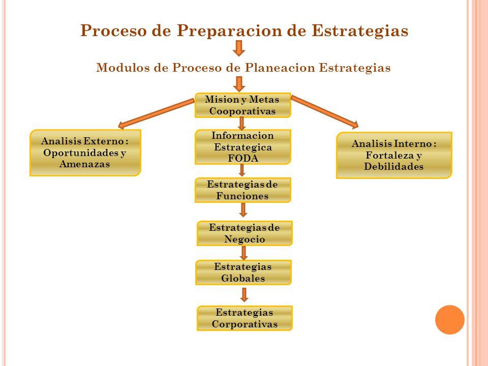 Proceso de Preparacion de Estrategias