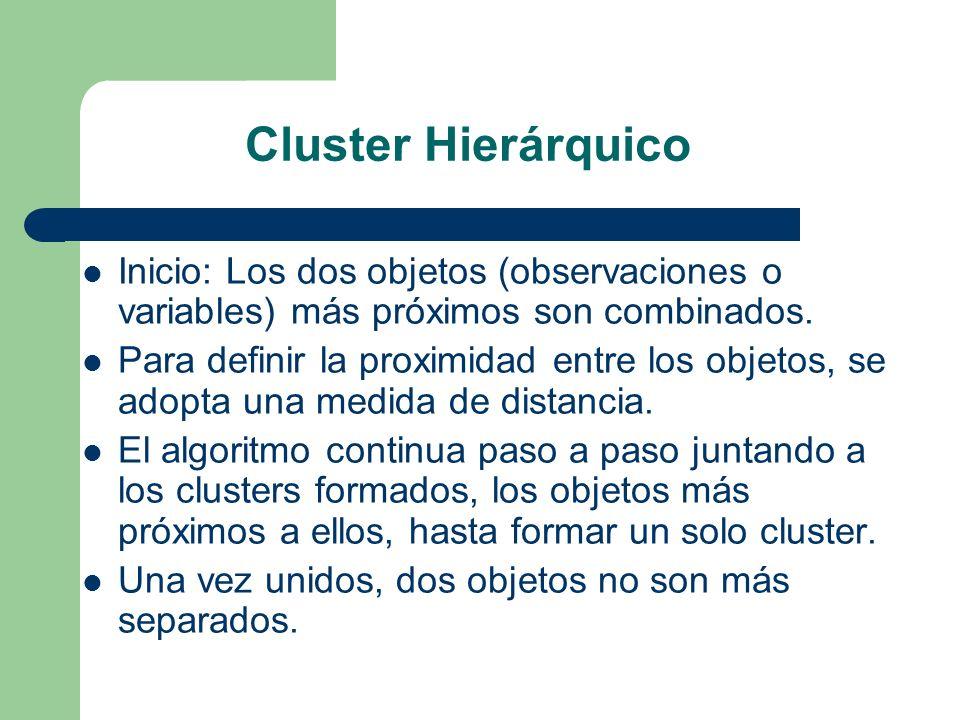 Cluster Hierárquico Inicio: Los dos objetos (observaciones o variables) más próximos son combinados.
