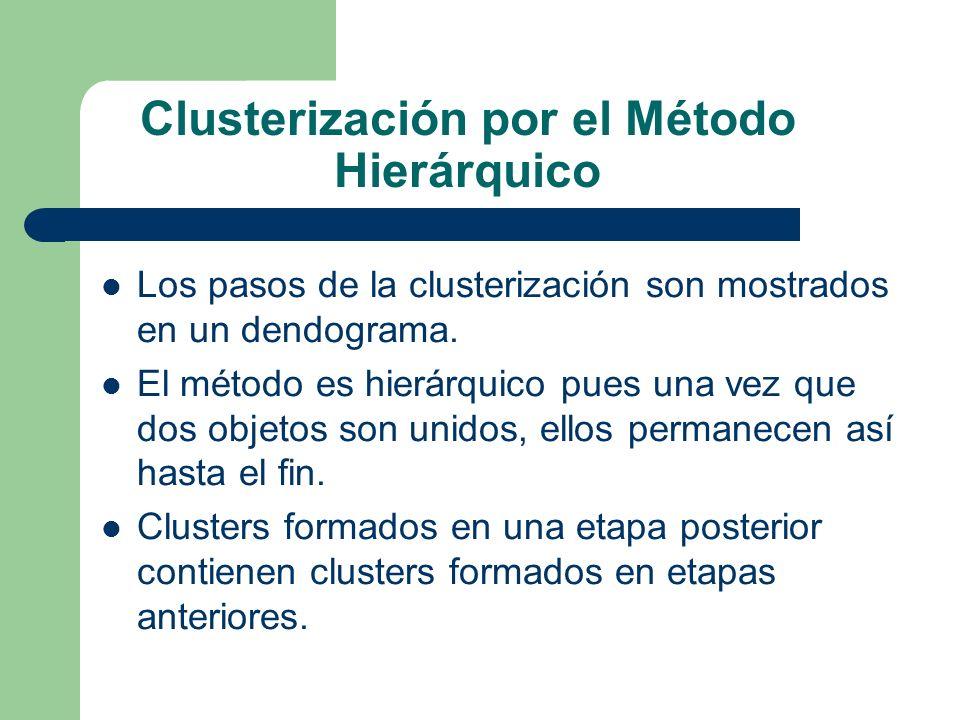 Clusterización por el Método Hierárquico
