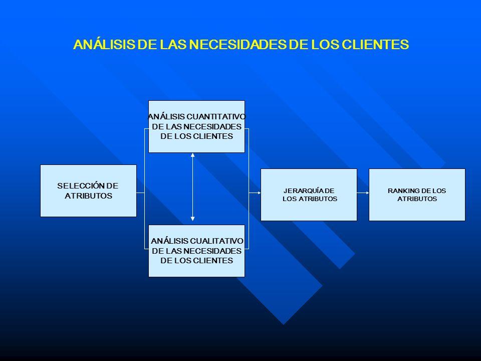 ANÁLISIS DE LAS NECESIDADES DE LOS CLIENTES