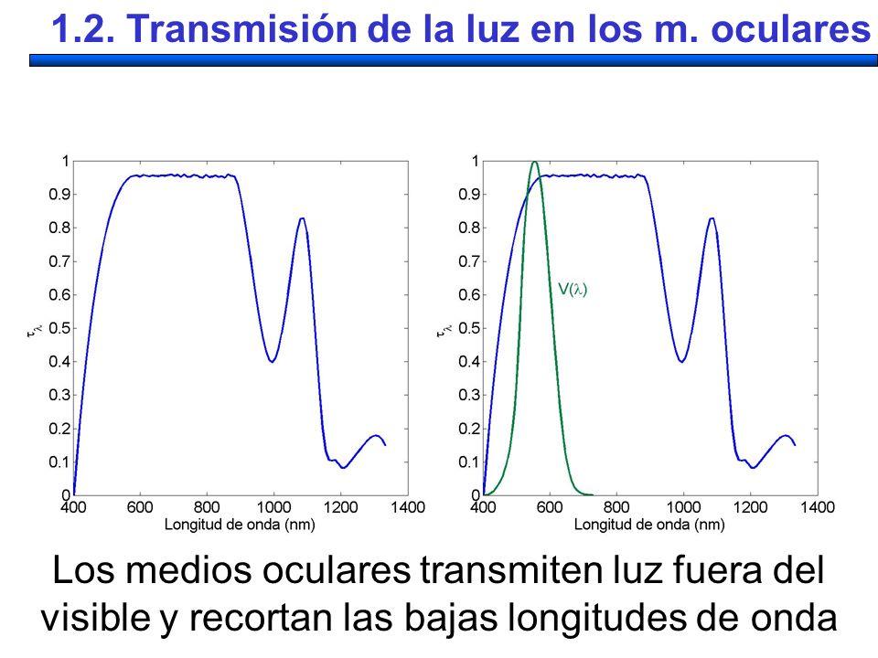 1.2. Transmisión de la luz en los m. oculares
