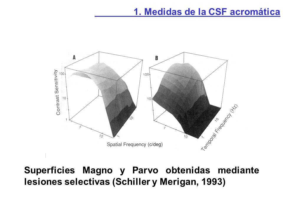1. Medidas de la CSF acromática
