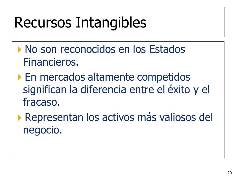 Recursos Intangibles No son reconocidos en los Estados Financieros.